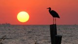 places-fairhope-away-at-the-bay-